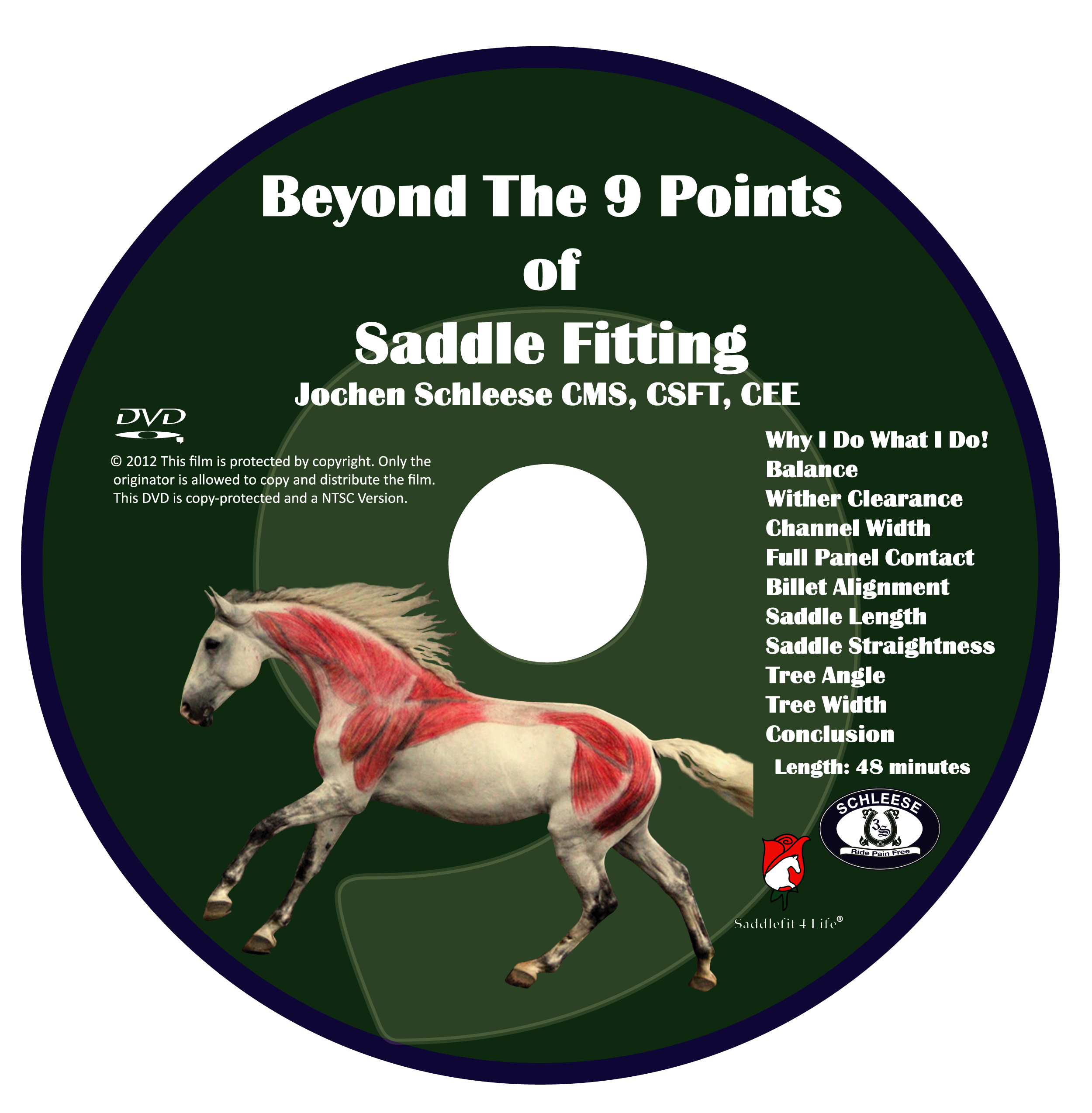 Beyond the 9 Points of Saddle Fitting Video Download
