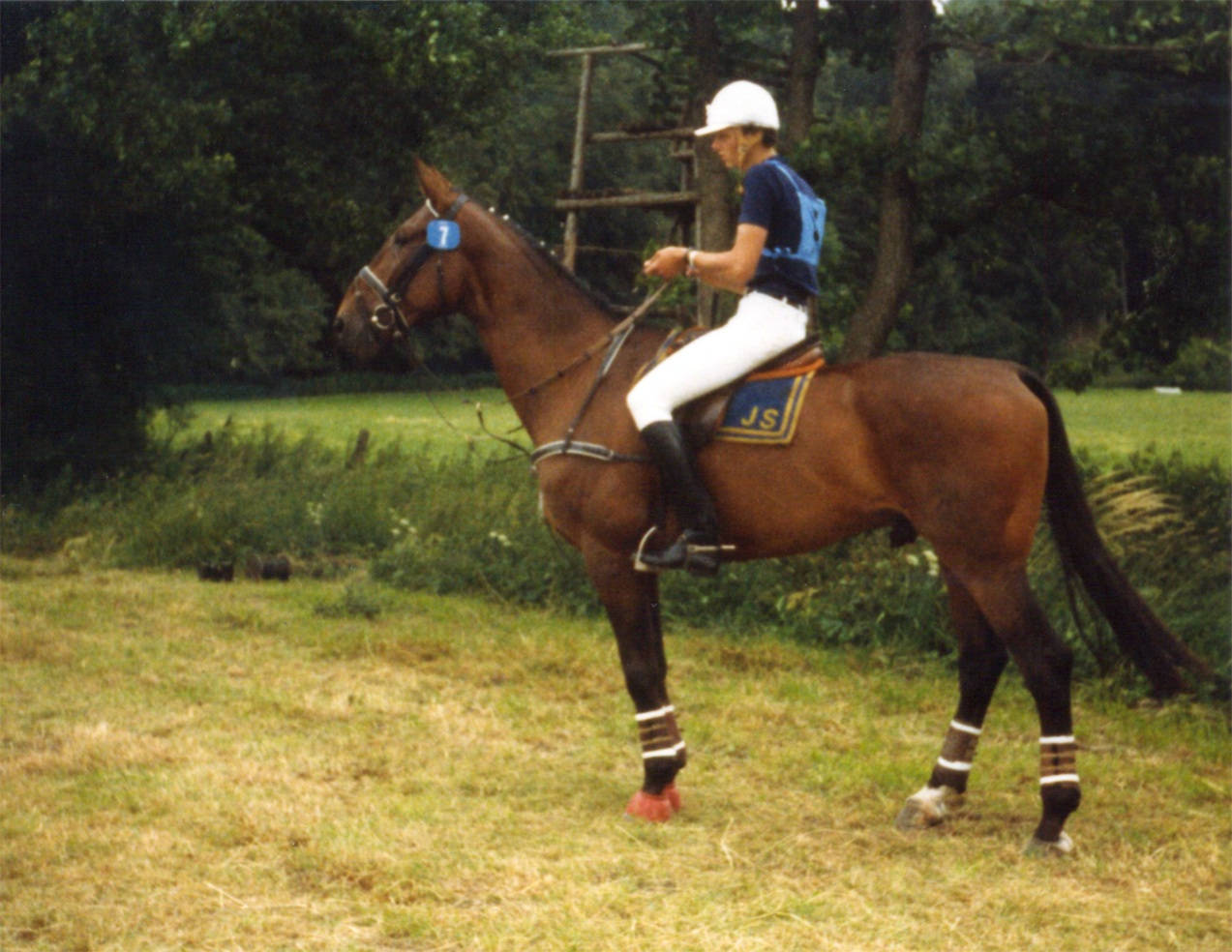 Jochen Schleese - Eventing on 'Pirat'