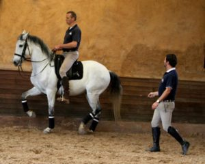 """Here I am working with the head trainer of the Lusitano Association in Sao Paulo, Brazil, Davil Carrano - who helped me develop our """"Obrigado"""" saddle"""