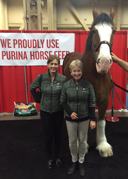Cathy Rothery & Sabine Schleese at the AAEP Convention with Manson a Budweiser Clydesdale - Dec. 2015.