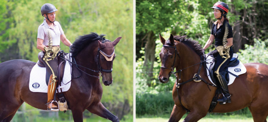 SCHLEESE The Female Saddle Specialist in Dressage, Jumping, Pony and
