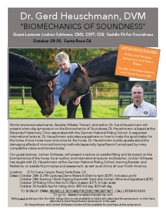 Gerd Heuschmann Clinic Flyer-20161028-30-revised
