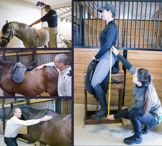 Collage - Saddle Fit Evaluations_200dpi
