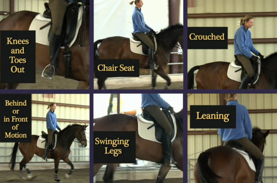 Does Your Saddle Fit Collage