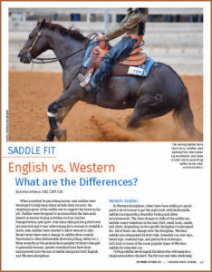 Saddle Fit: English vs. Western - What are the Differences?