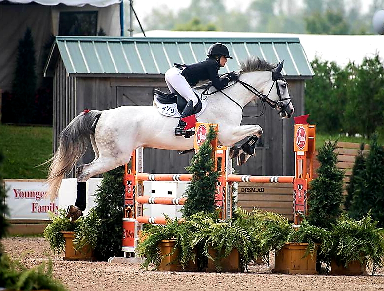 """After riding her in a Schleese saddle for a year, her back is now perfect!"""