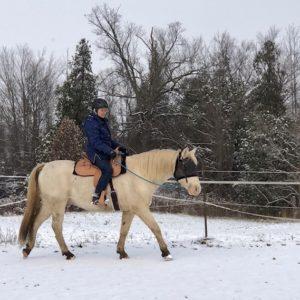 Rider Testimonials - Schleese
