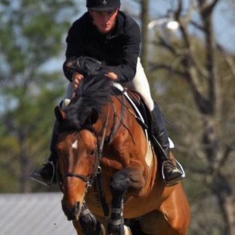 Nigel Potts - Potts Equestrian