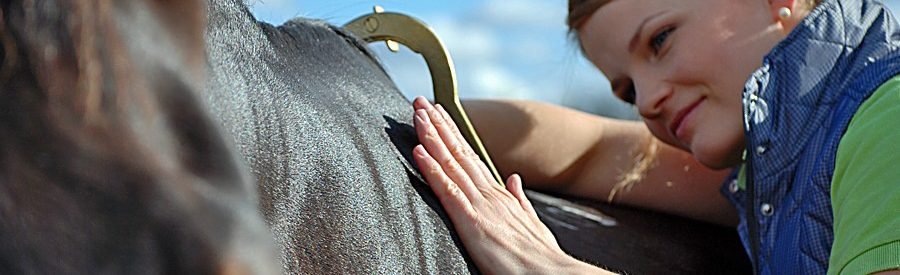 The Withers gauge from Sprenger - used by Saddle ergonomists to determine the horse's shoulder angle